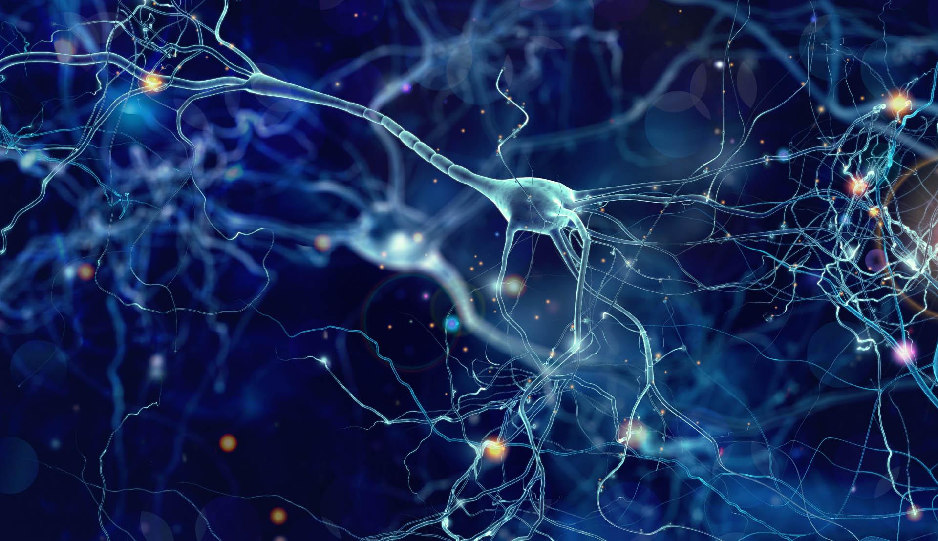 neurologo neurologia legnano busto garolfo arsizio magenta