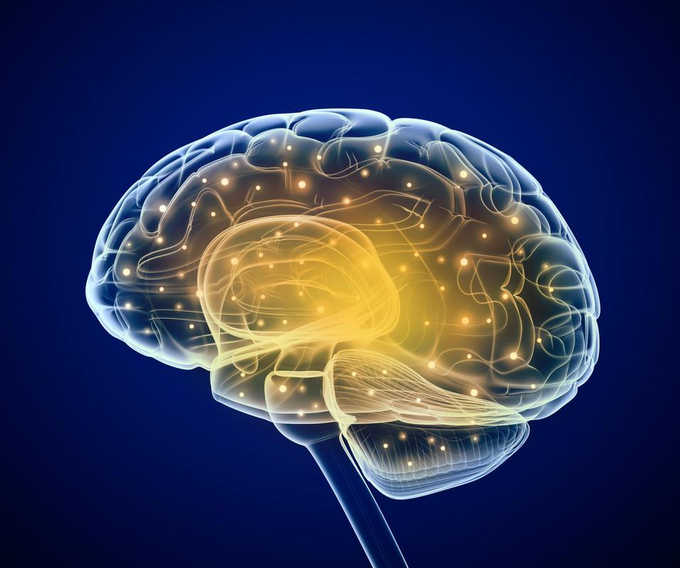 neurologia neurologo busto arsizio legnano busto garolfo magenta